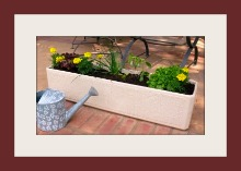 Plant a Vegetable Planter